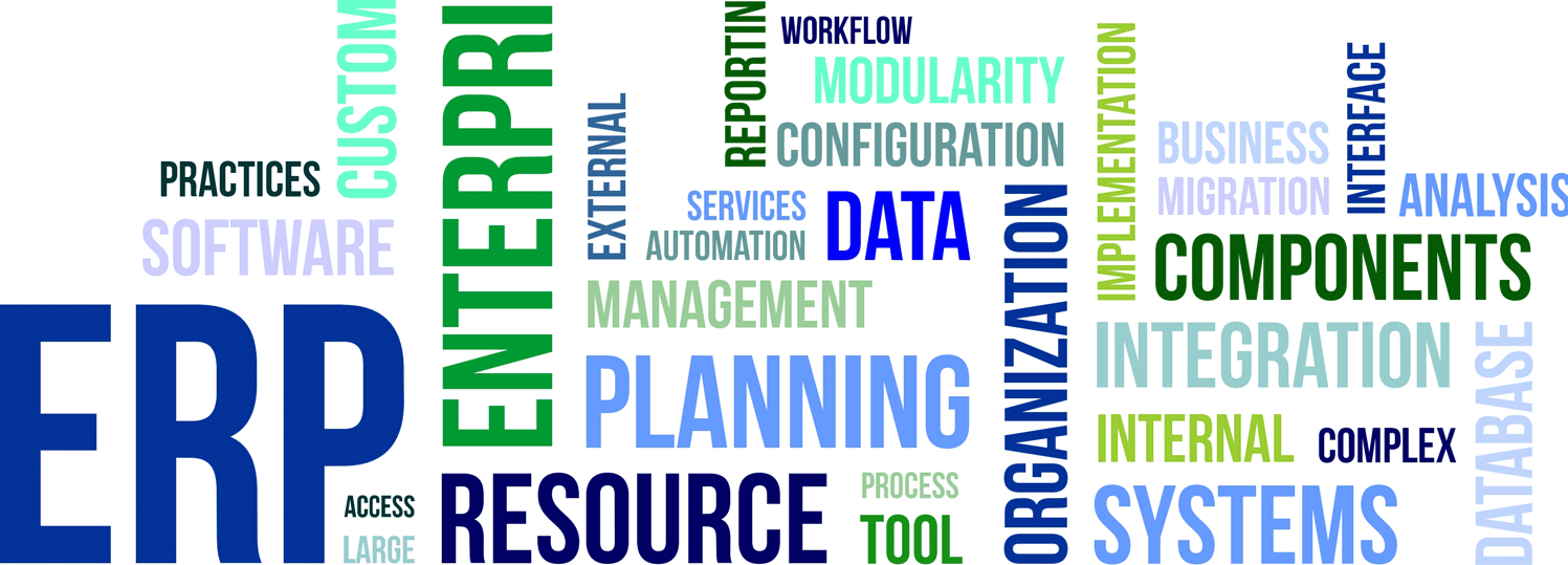ERP-Word-Cloud2